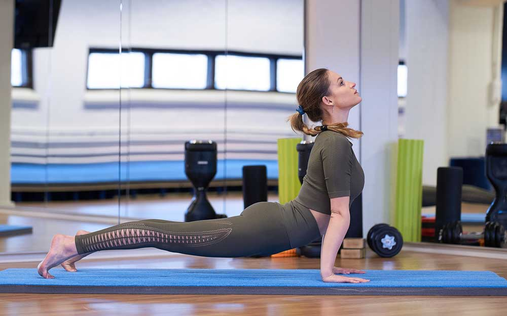 Fitness & Venyttely